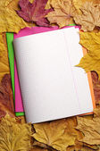 Opened school notebooks — Stockfoto