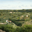 Typical panorama of villas, farmhouses and vineyards in Abruzzo, Italy - Stock Photo