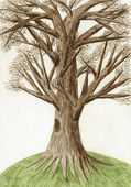"Artistic color pencil drawing ""The Tree"" — Stockfoto"