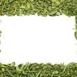Tea frame. — Stock Photo #20705429