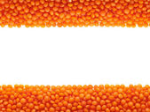 Frame of Lentils. — Stock Photo