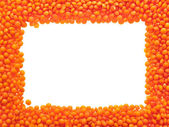 Red lentils - frame. — Stock Photo