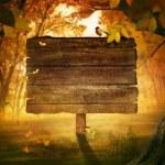 Autumn design - Forest sign — Stock Photo #12455141