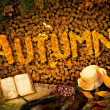 Autumn design - Dear diary — Stock Photo