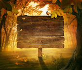 Autumn design - Forest sign — Stock Photo