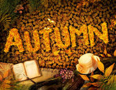Autumn design - Dear diary — Foto de Stock