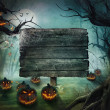 Stock Photo: Halloween design - Forest pumpkins