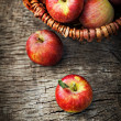 Freshly harvested apples — Stock Photo #12739330
