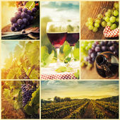 Country wine collage — 图库照片