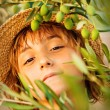 Girl in olive farm — Stock Photo