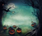 Halloween design - Forest pumpkins — Stock Photo