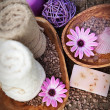 Violet dayspa nature set - Stockfoto