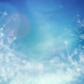 Winter frozen background — Stock Photo