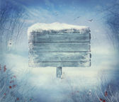 Zimní design - vánoční údolí s znamení — Stock fotografie