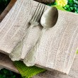 Rustic table setting — Stock Photo #19250219