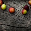 Fresh wild plum — Stock Photo