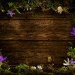 Spring design - Flower wreath — Stock Photo