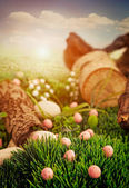 Colorful Easter — Stock fotografie