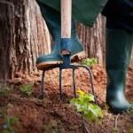 Spring garden concept. — Stock Photo