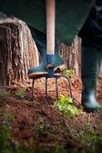 Concepto de jardín primavera. — Foto de Stock