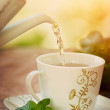 Cup of tea — Stock Photo #23988261