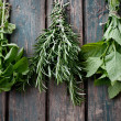 Stock Photo: Fresh herbs