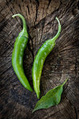 Fresh chilies — Stock Photo
