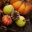 Autumn fruit — Stock Photo