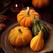 Restaurant autumn place setting — Foto Stock