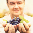 Grapes harvest — Stock Photo #32744673
