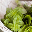 Fresh herbs — Stock Photo #39981119