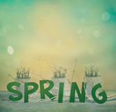 Spring letters — Stock Photo