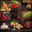 Organic vegetables collage — 图库照片