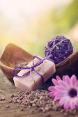 Violet dayspa nature set — Stock Photo