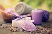 Violett dayspa karaktär set — Stockfoto
