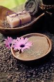 Jeu de caractère dayspa violet — Photo