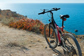 Bike on coastline — Stock Photo