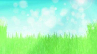 зеленая трава в солнечный день — Стоковое видео