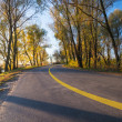 Countryside road — Stock Photo