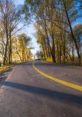 Wsi droga — Zdjęcie stockowe