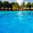 Tropical Pool — Stockfoto #12476531