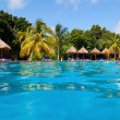 Tropical Pool — Stockfoto #12476575