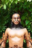 Xamã maia — Foto Stock