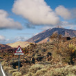 Winding Road to Teide Mountain, Tenerife — Stock Photo