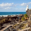 Stock Photo: Natural Pools of Garachico, Tenerife
