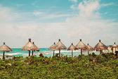 Palapa sun roof beach umbrellas in Caribbean Sea — Stock Photo