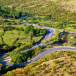 Winding Countryside Road — Stock Photo