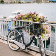 Bycicle in Geneva Lake — Stock Photo