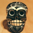 Stock Photo: Mexican Skull