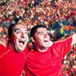 Football Supporters Watching a Match — Stock Photo #36959205